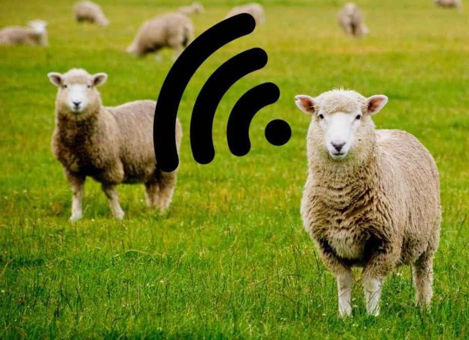 Internet nelle aree rurali
