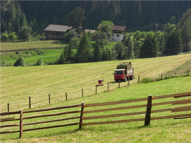 investimenti_agricoltura