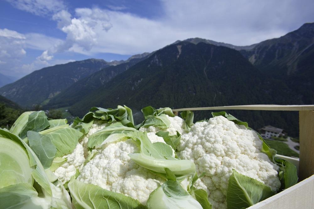 Südtiroler Produkte