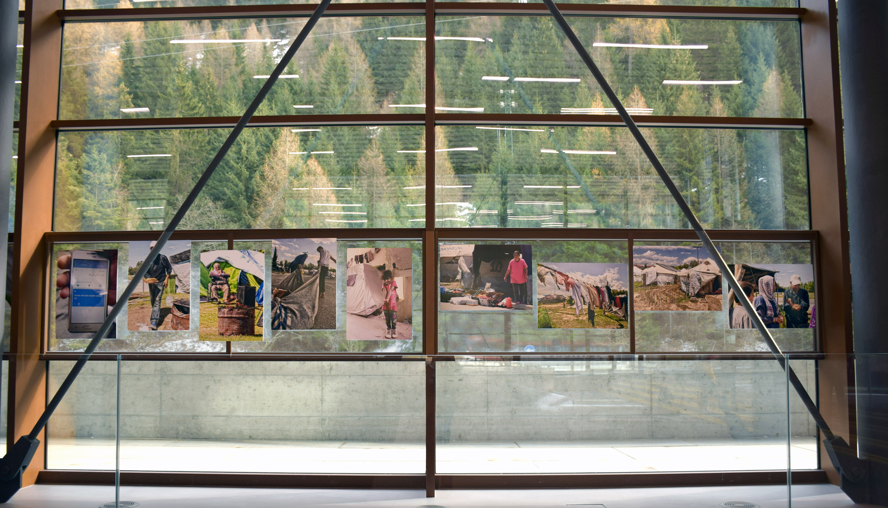 mostra_Pless_Museum (2)