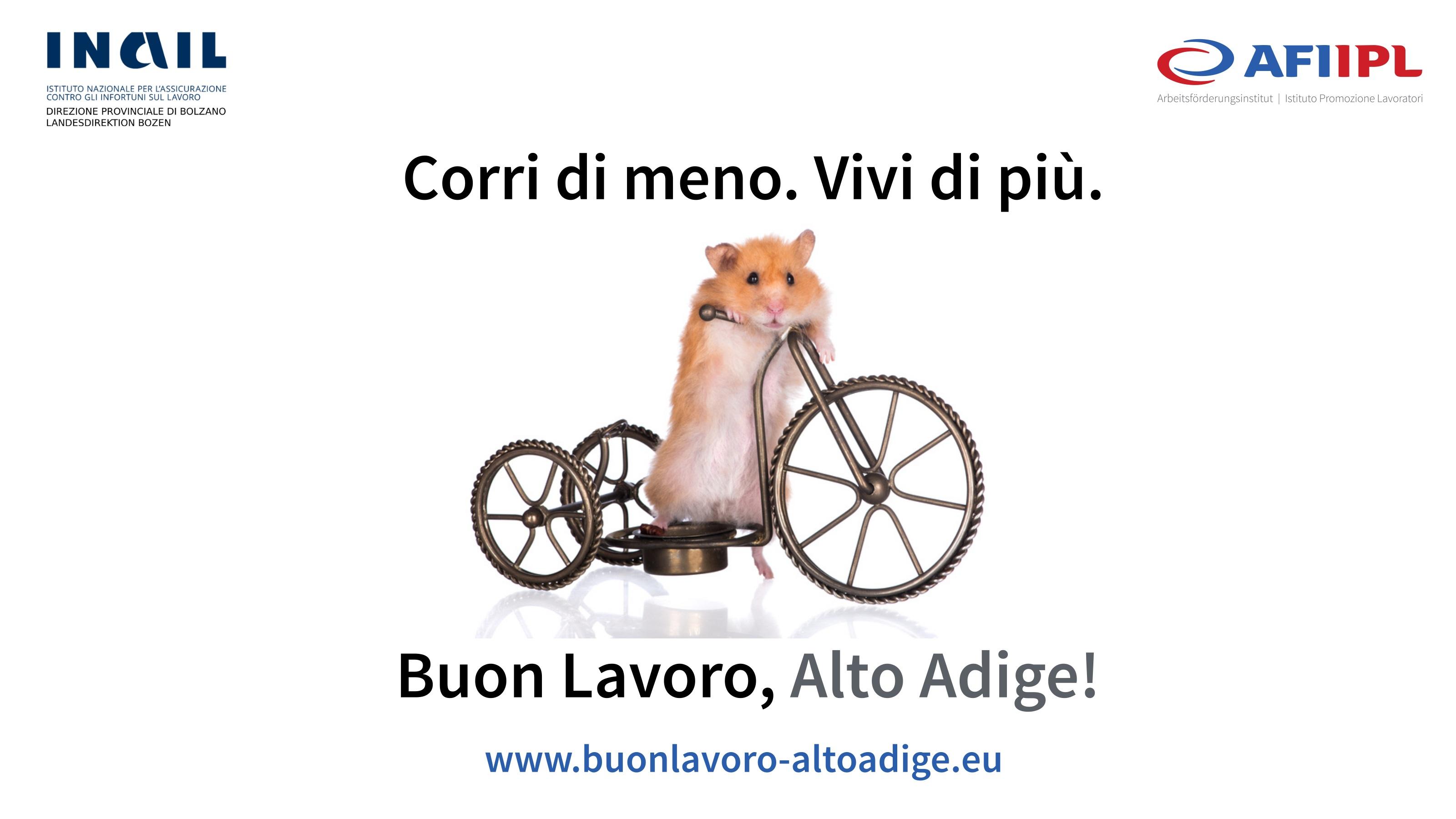 Buon lavoro Alto Adige
