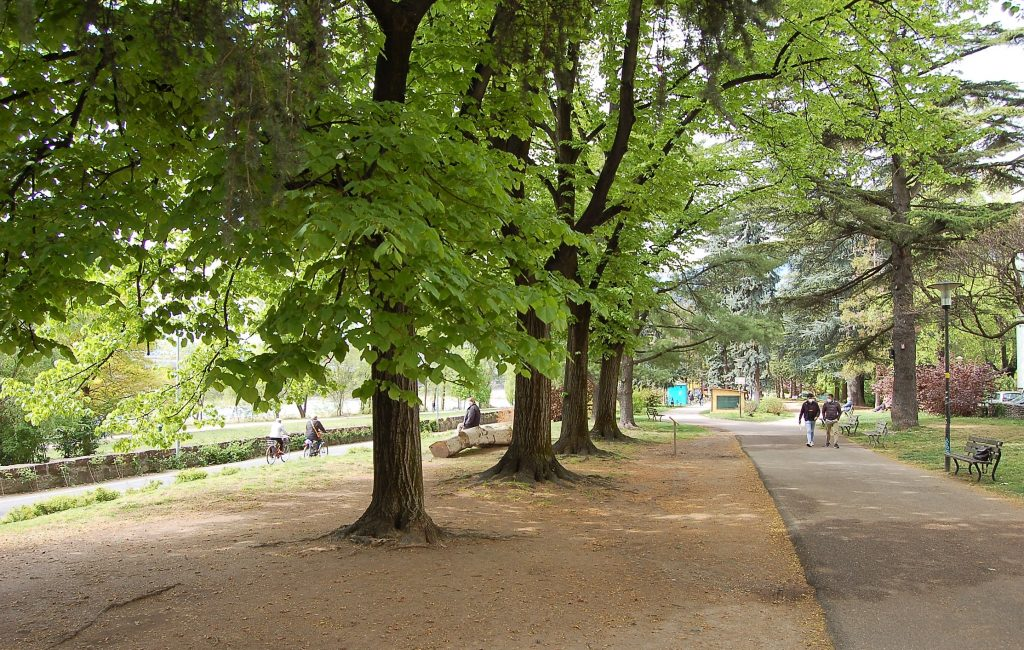 parco bioenergetico
